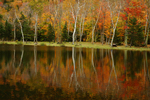 New Hampshire Fall by Dale Jacobson