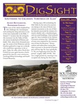 Winter 2009 DigSight Newsletter