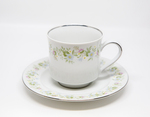 Johann Haviland Bavaria Germany Tea Cup Set by Johann Haviland Coporation